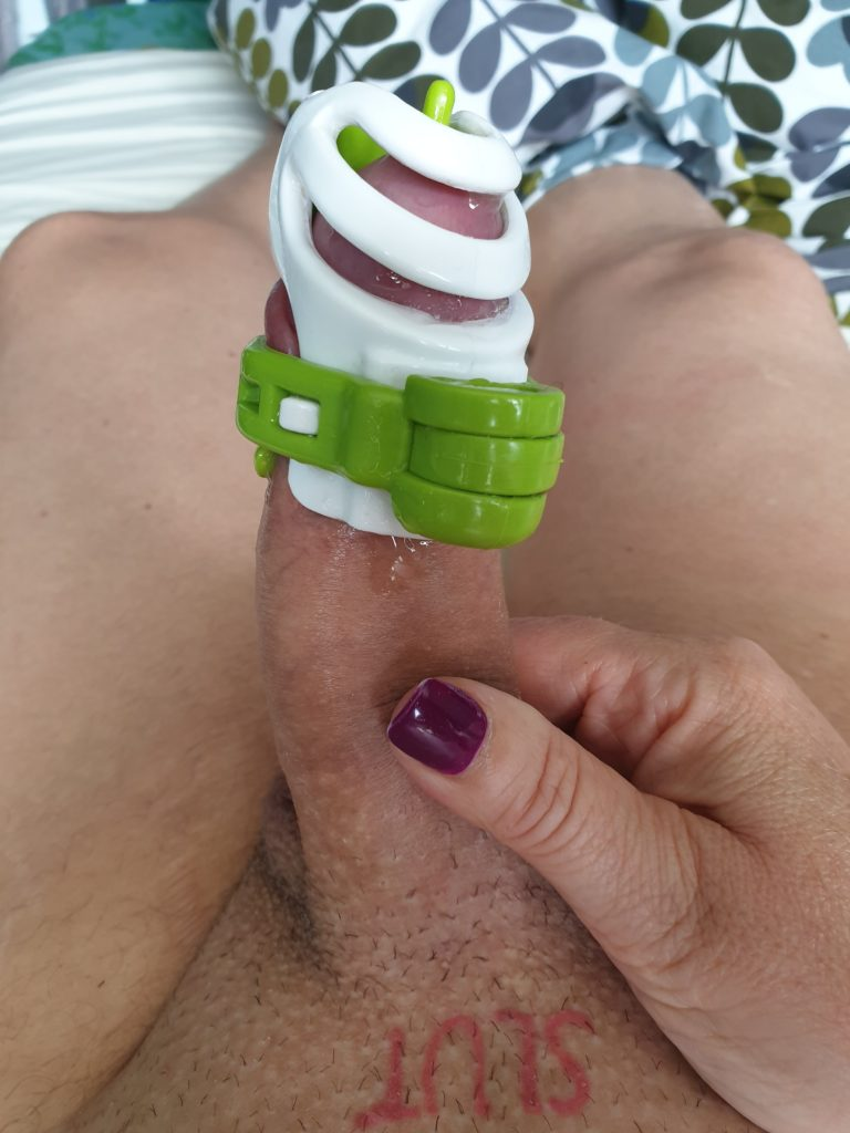 Erection chastity